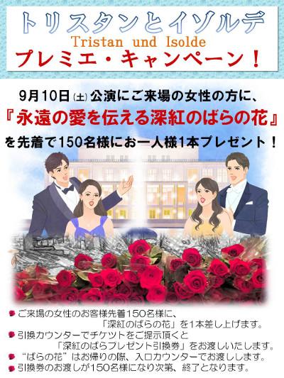 201608_rose_02.jpg
